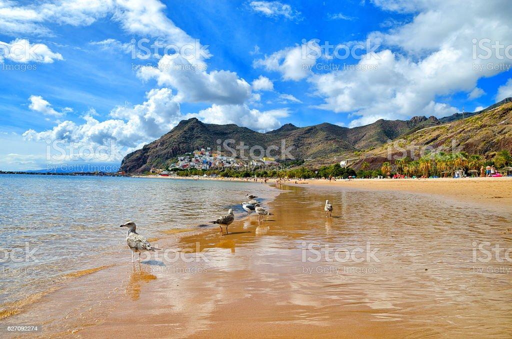 Playa de Las Teresitas near Santa Cruz de Tenerife. stock photo