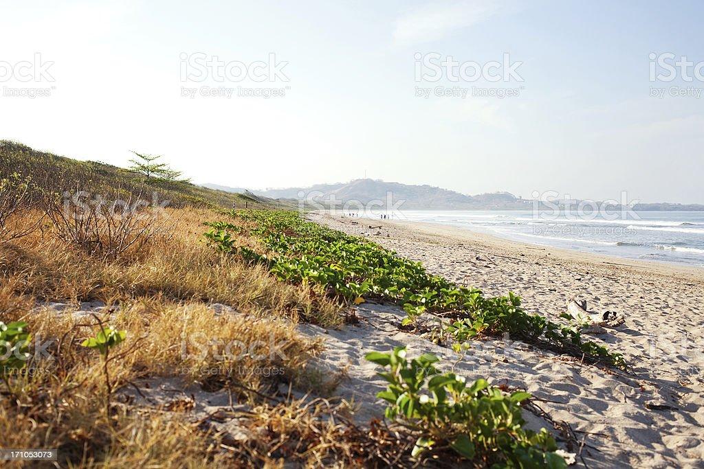Playa Grande royalty-free stock photo