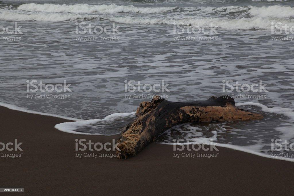 Playas de Costa Rica stock photo