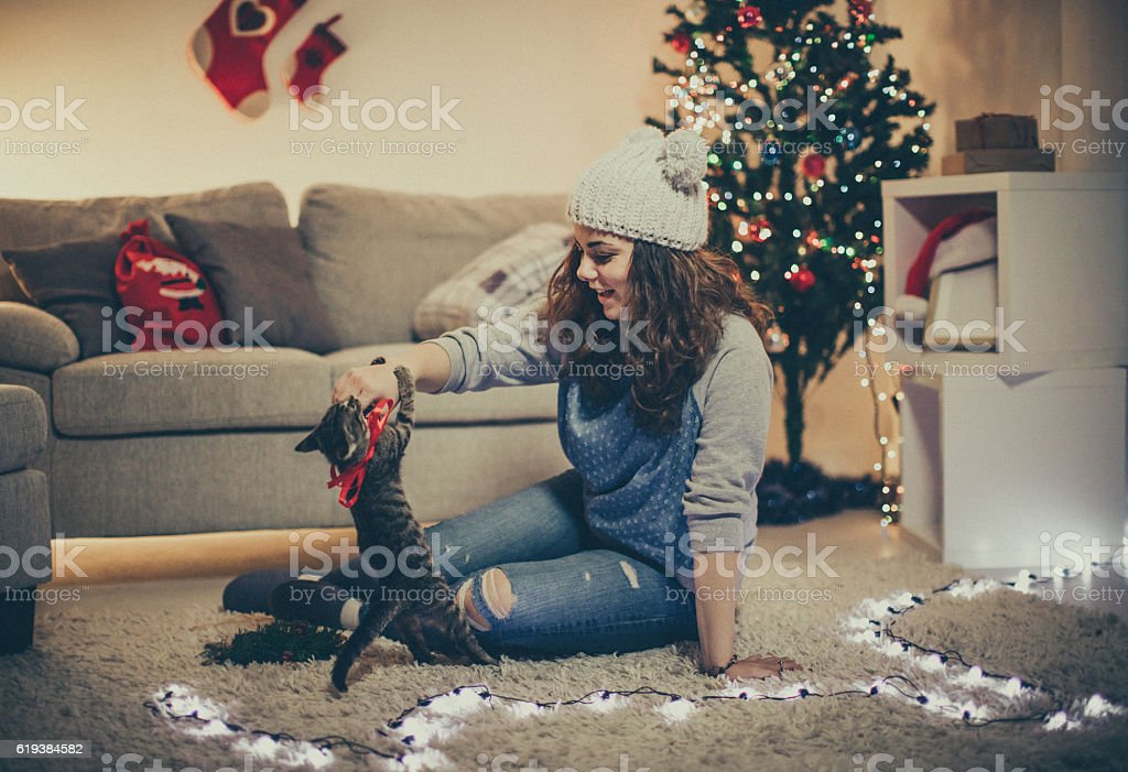 Playful cat for New Year's Eve stock photo
