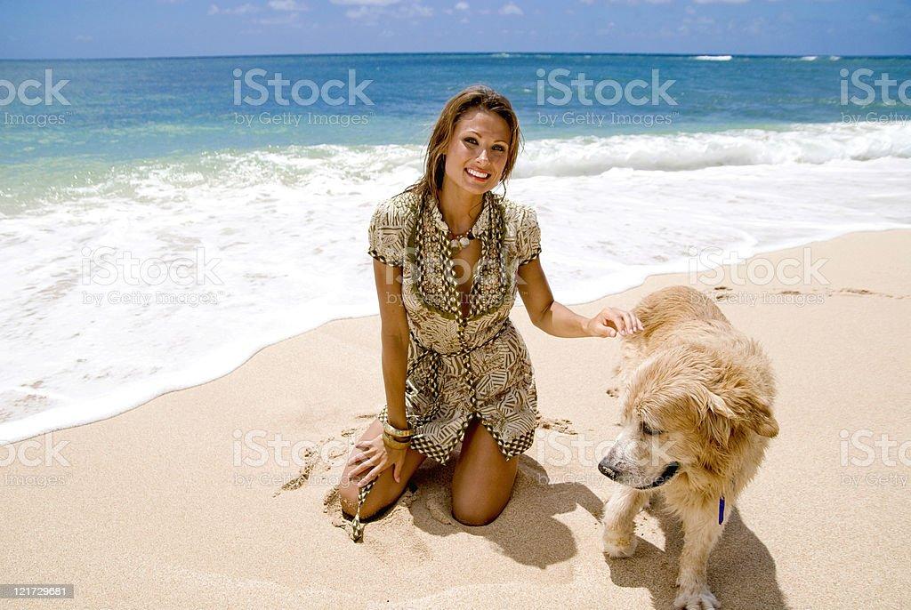 Playful Pet stock photo