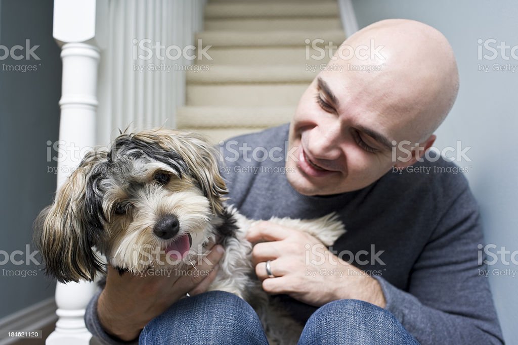 Playful Puppy royalty-free stock photo