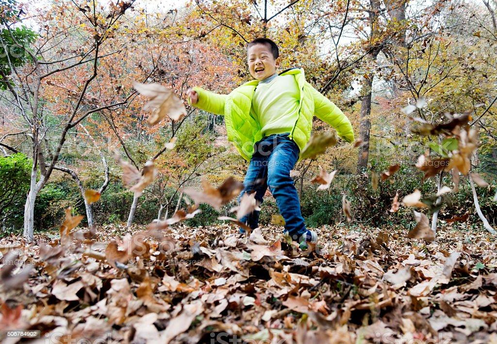 Playing at fall stock photo