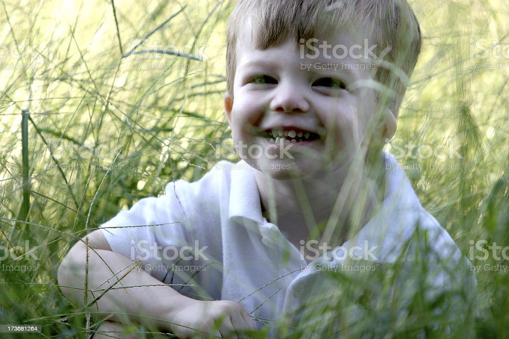 Playing in the grass. stock photo
