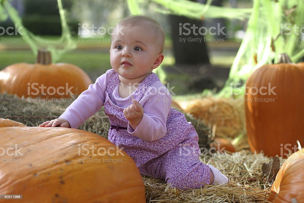 Playing in the pumpkin patch. stock photo