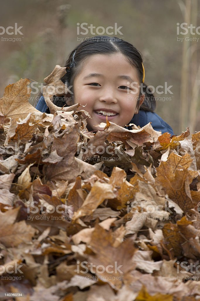 playing leaves royalty-free stock photo