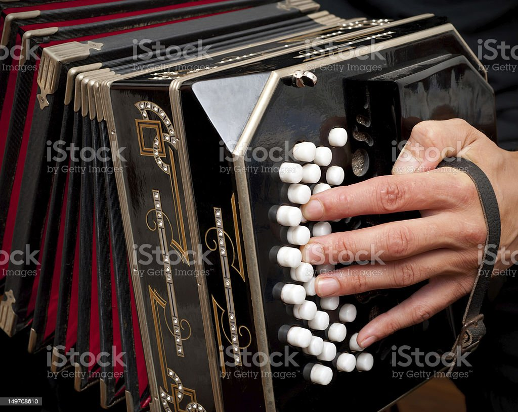 Playing traditional bandoneon. stock photo