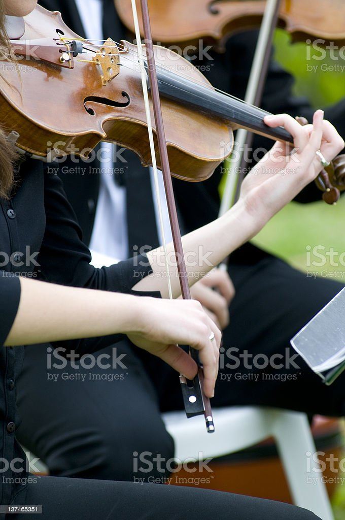 Playing Violin royalty-free stock photo