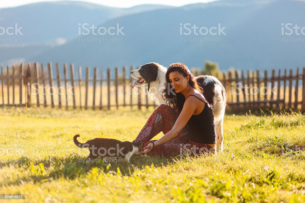 Playing with cats and dogs in the beautiful outdoors stock photo
