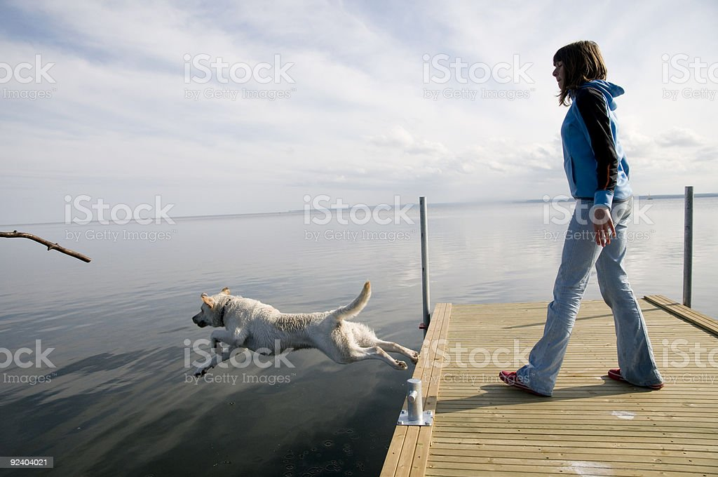 Playing with dog stock photo