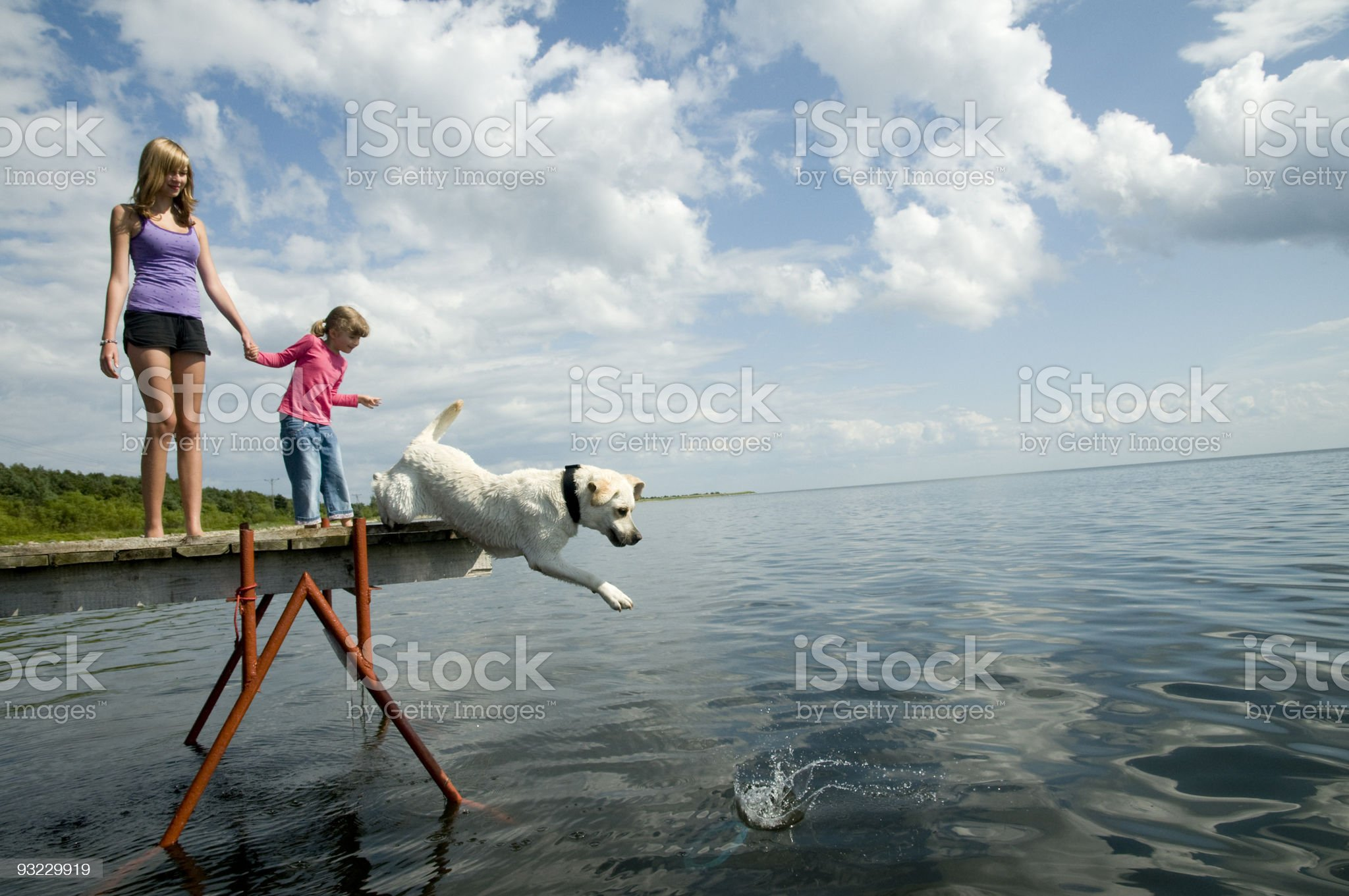 Playing with dog royalty-free stock photo