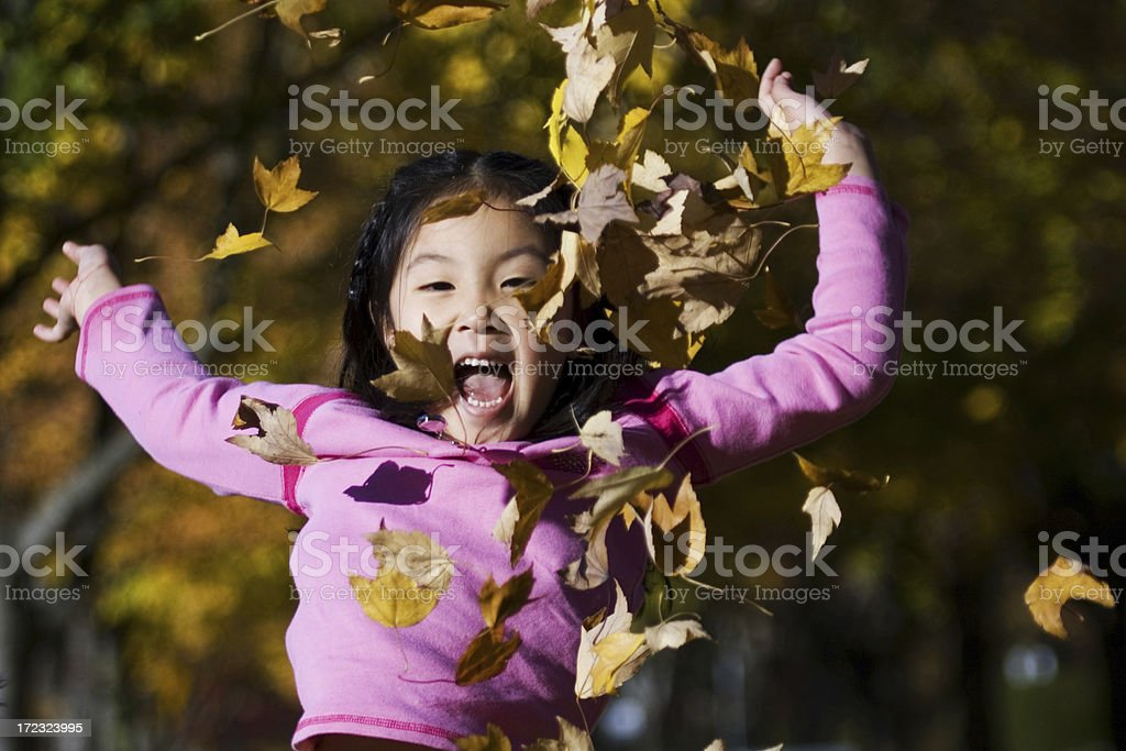 Playing With Leaves royalty-free stock photo