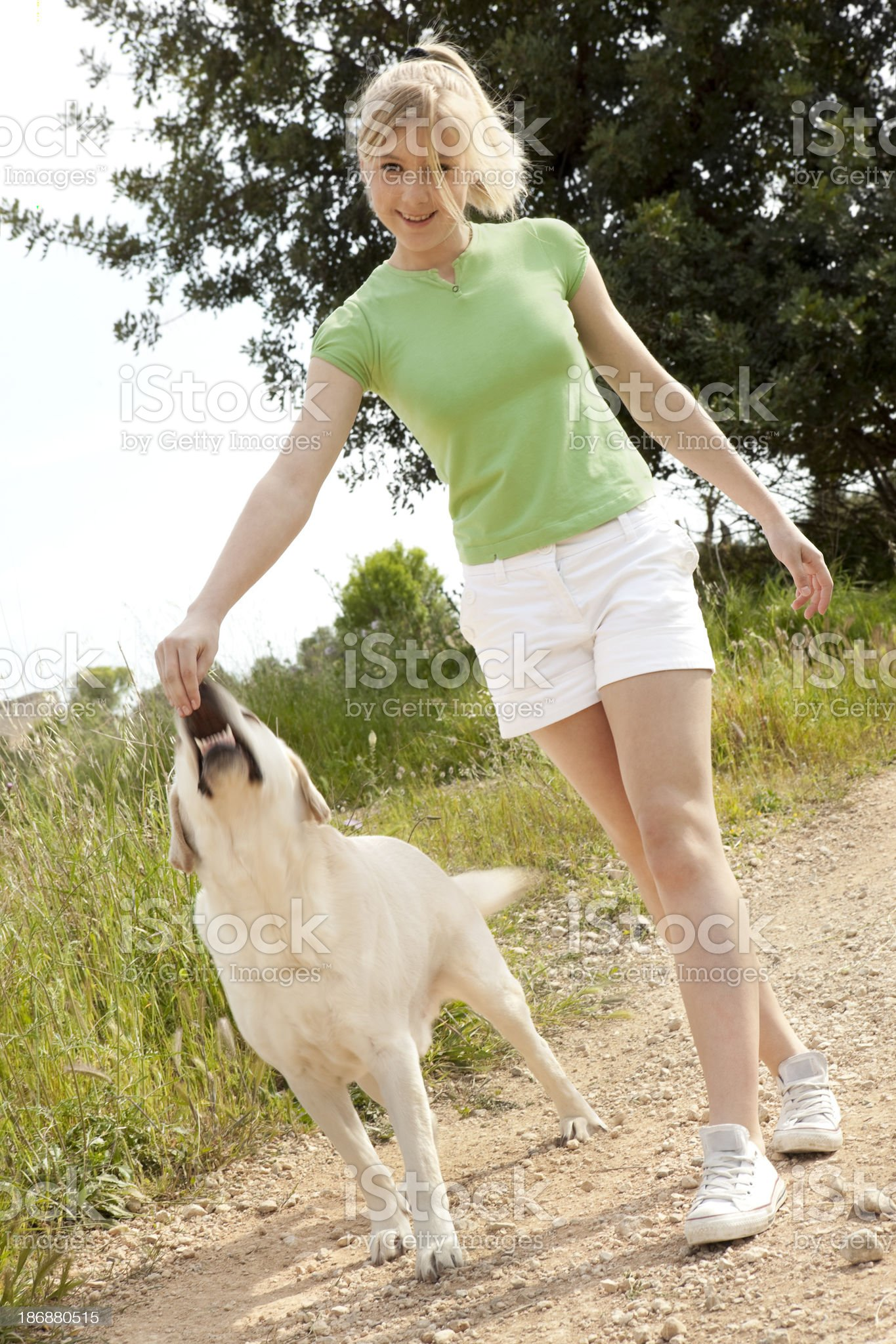 playing with my dog royalty-free stock photo