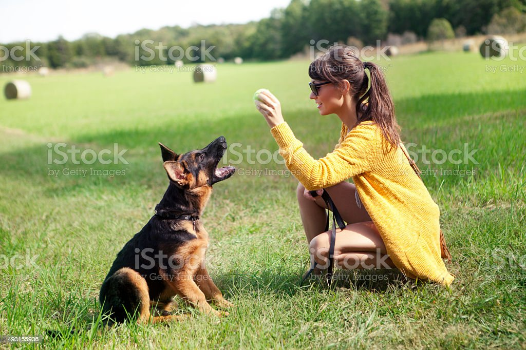 Playing with puppy outdoor stock photo