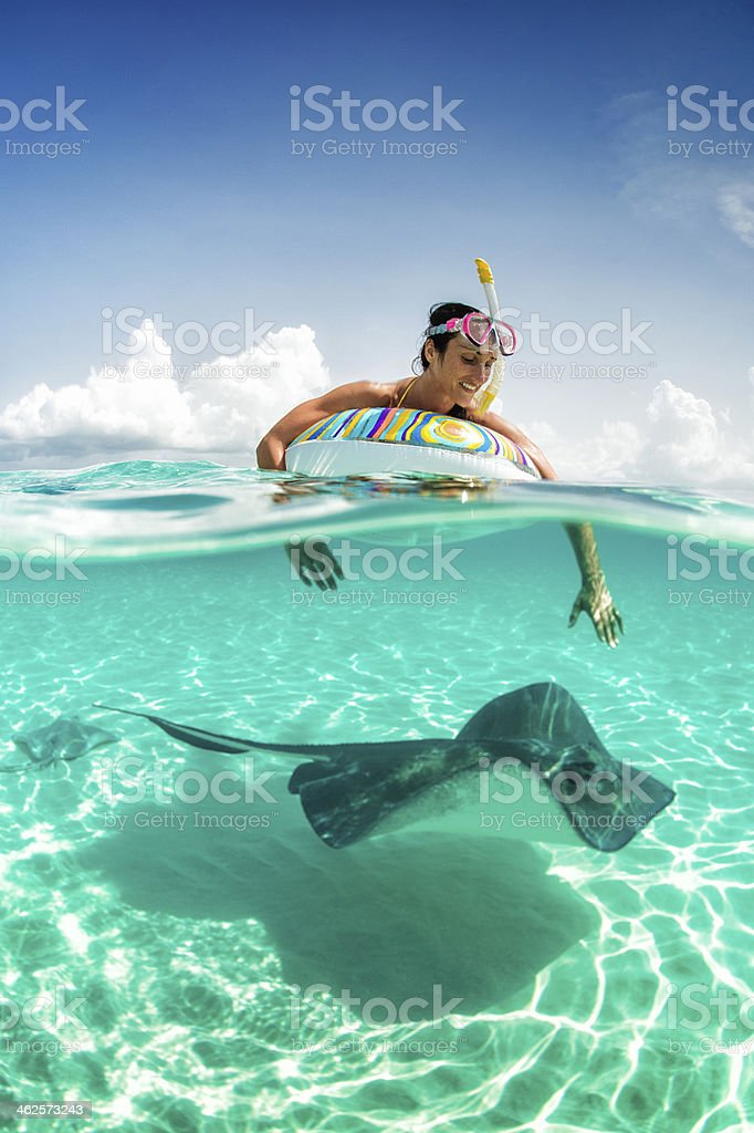 Playing with the stingray stock photo