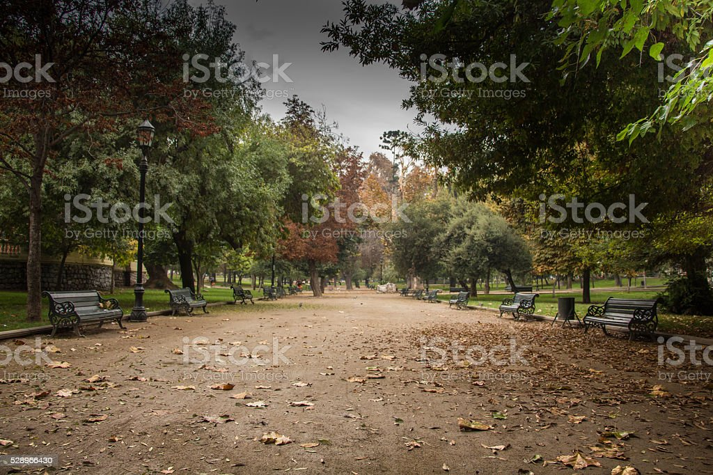 plaza en otoño stock photo