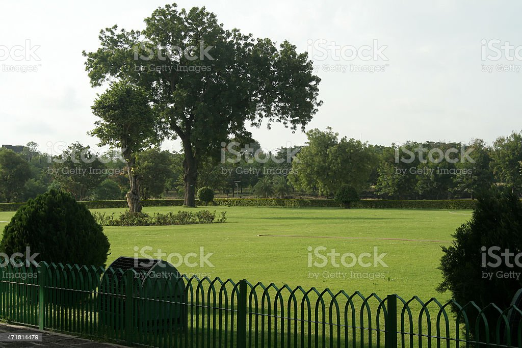 Pleasant Green Garden royalty-free stock photo