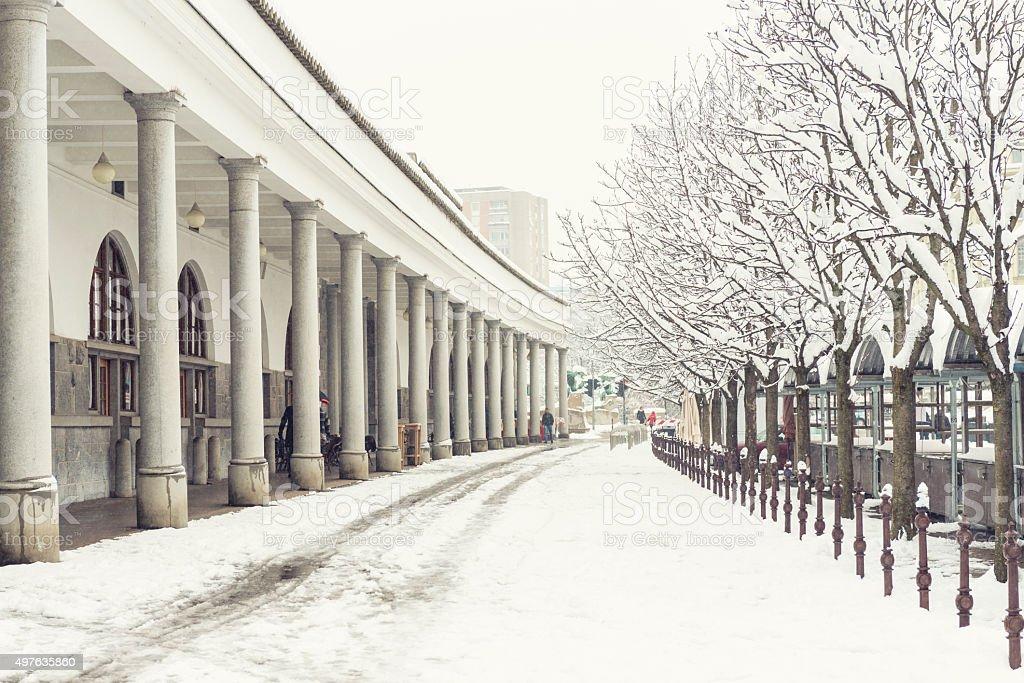 Plecnik market in LJubljana in snow stock photo