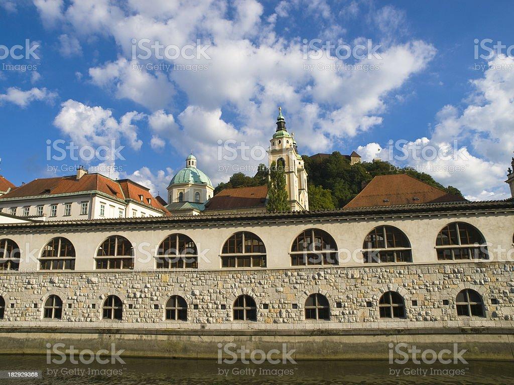 Plecnik marketplace stock photo