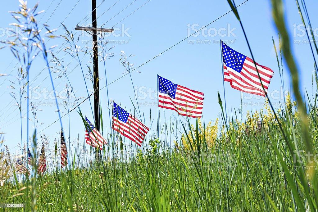 I Pledge Allegiance stock photo