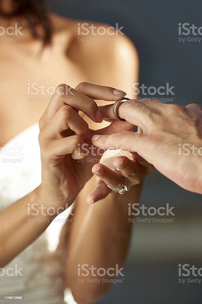 Pledging their loyalty royalty-free stock photo