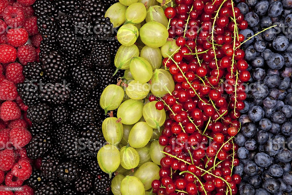 plenty of different fresh berries in a row close stock photo