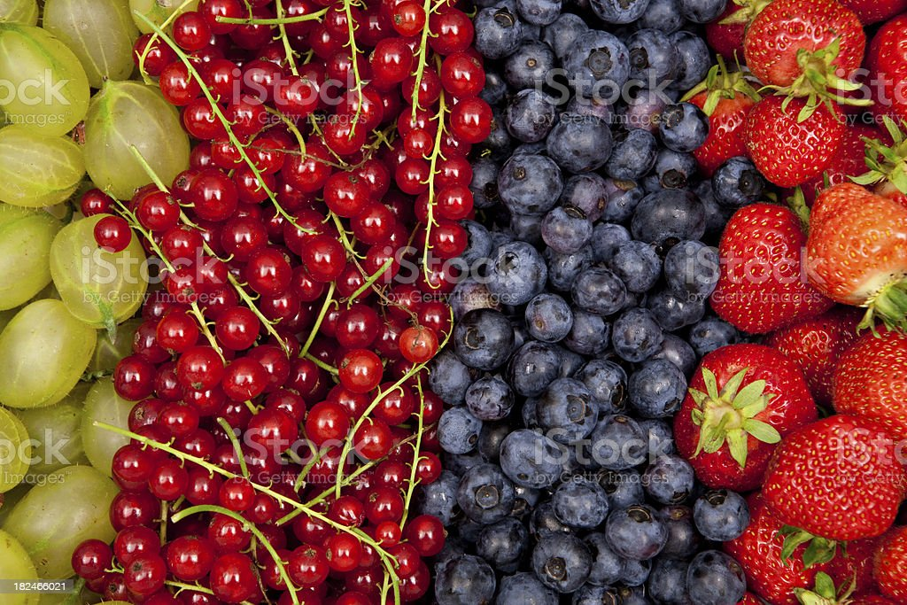 plenty of different fresh berries in a row closeup royalty-free stock photo