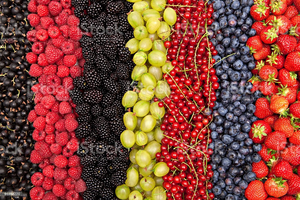 plenty of different fresh berries in a row stock photo