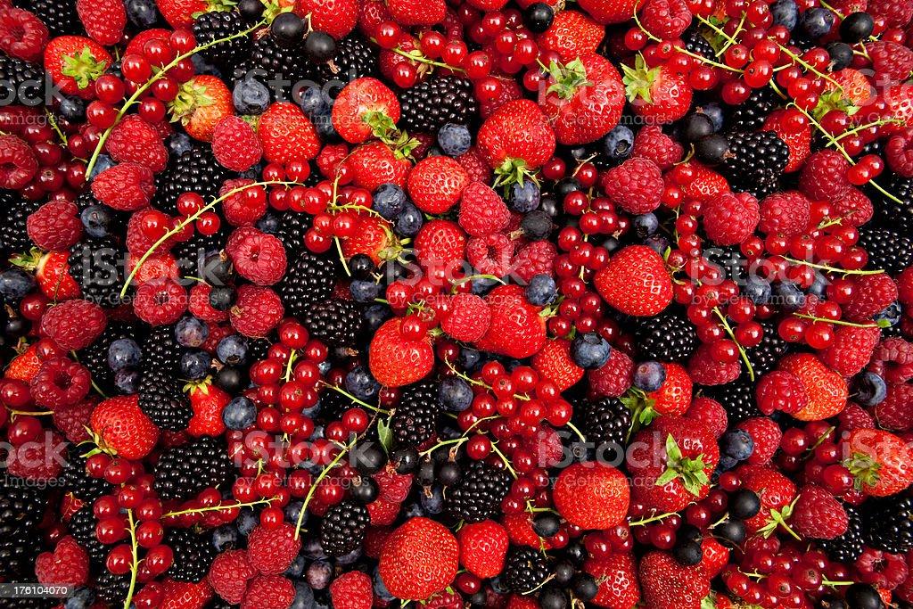 plenty of fresh mixed berries royalty-free stock photo