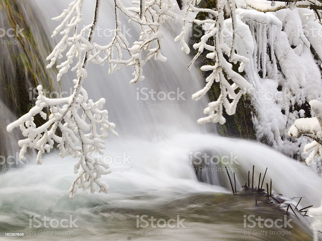 Plitvice detail royalty-free stock photo