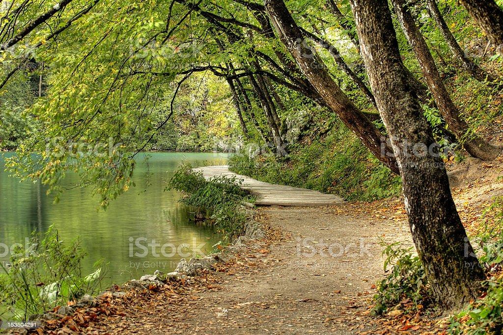 Plitvice Lakes National Park - Shore stock photo