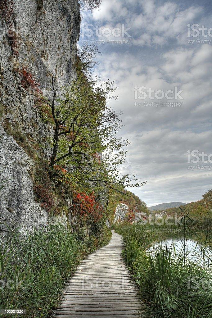 Plitvice Lakes National Park - Tree on the rocks stock photo