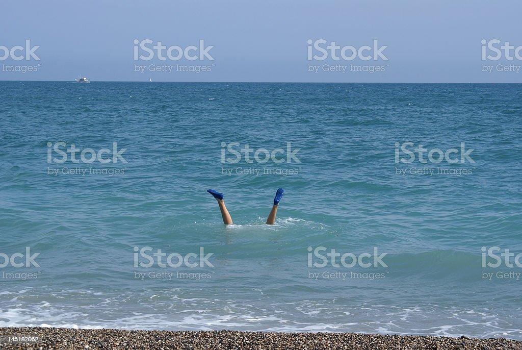 plongeon stock photo