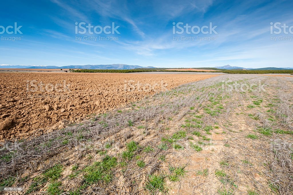 Ploughed and stubble fields stock photo