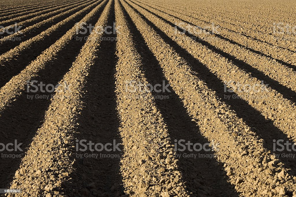 Ploughed Field on a Farm royalty-free stock photo