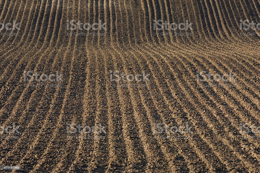 Ploughed field royalty-free stock photo
