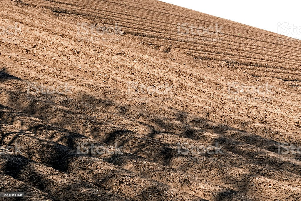 Ploughed Field. stock photo