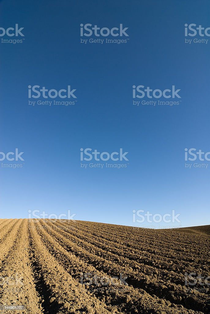 Ploughed field set against a blue sky royalty-free stock photo