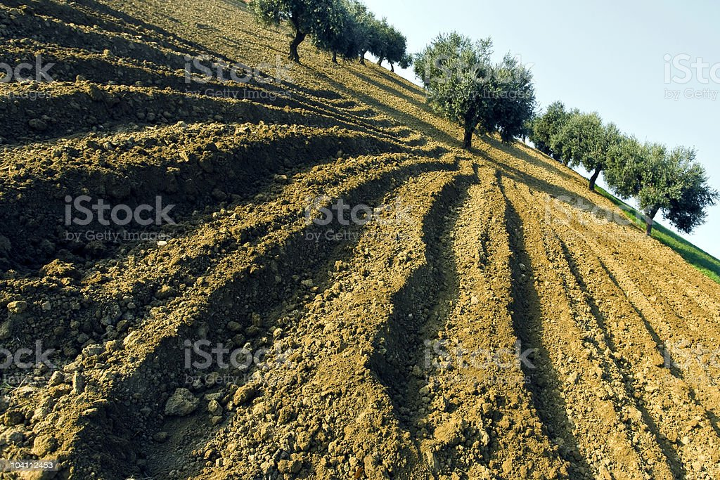 Ploughed land royalty-free stock photo