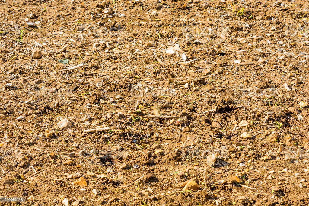 Ploughed Soil Detail stock photo