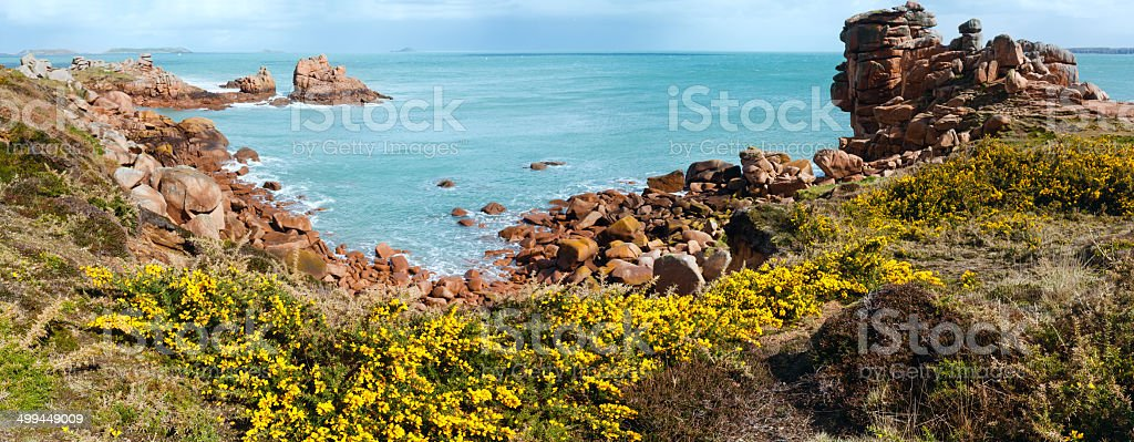 Ploumanach coast spring panorama (Brittany, France) stock photo