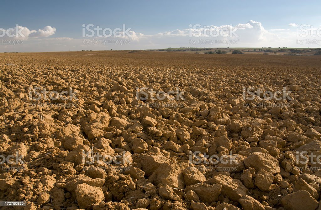 Plowed Agricultural Field royalty-free stock photo