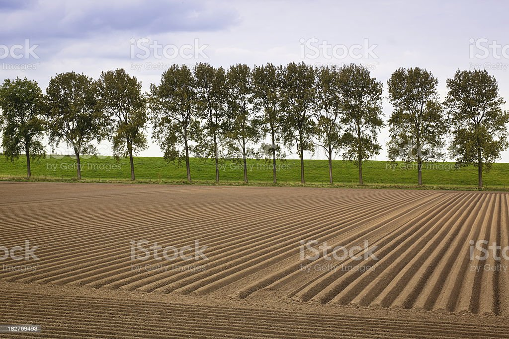 Plowed Farmland royalty-free stock photo