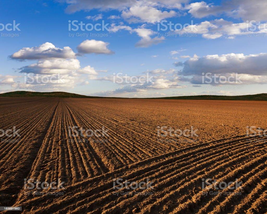 Plowed Fiel landscape royalty-free stock photo