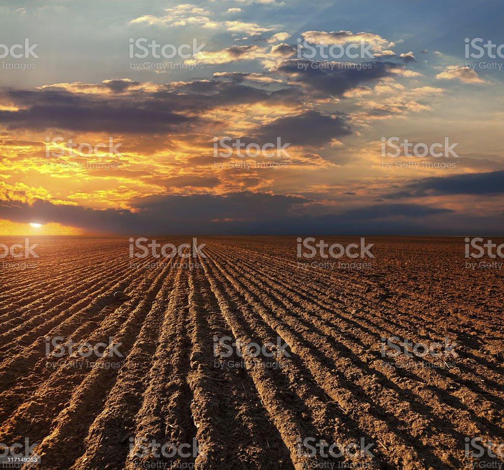Plowed Fiel stock photo