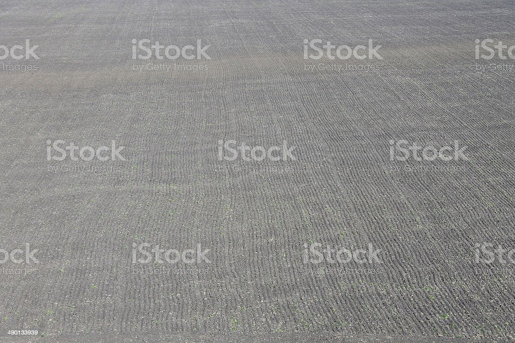 plowed field background royalty-free stock photo