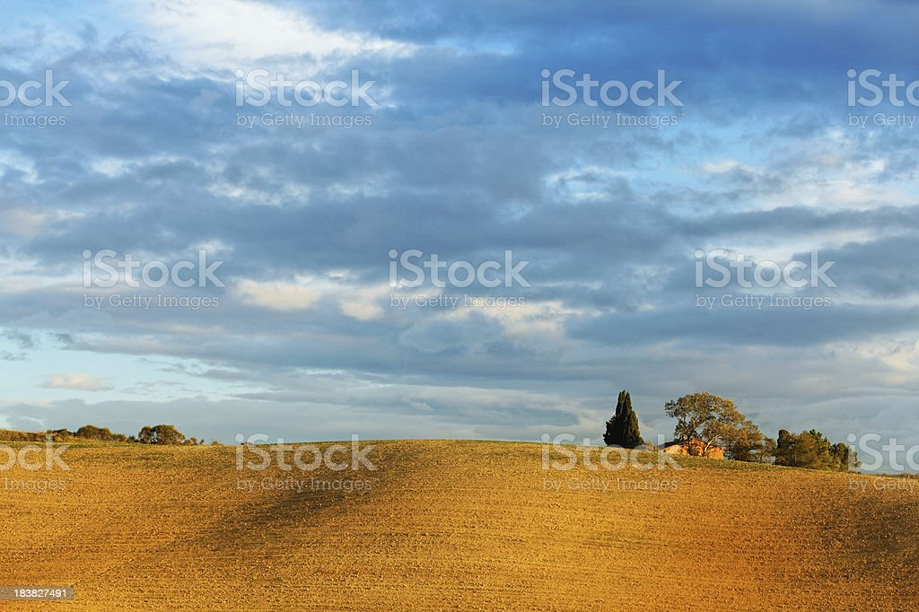plowed fields in Tuscany stock photo