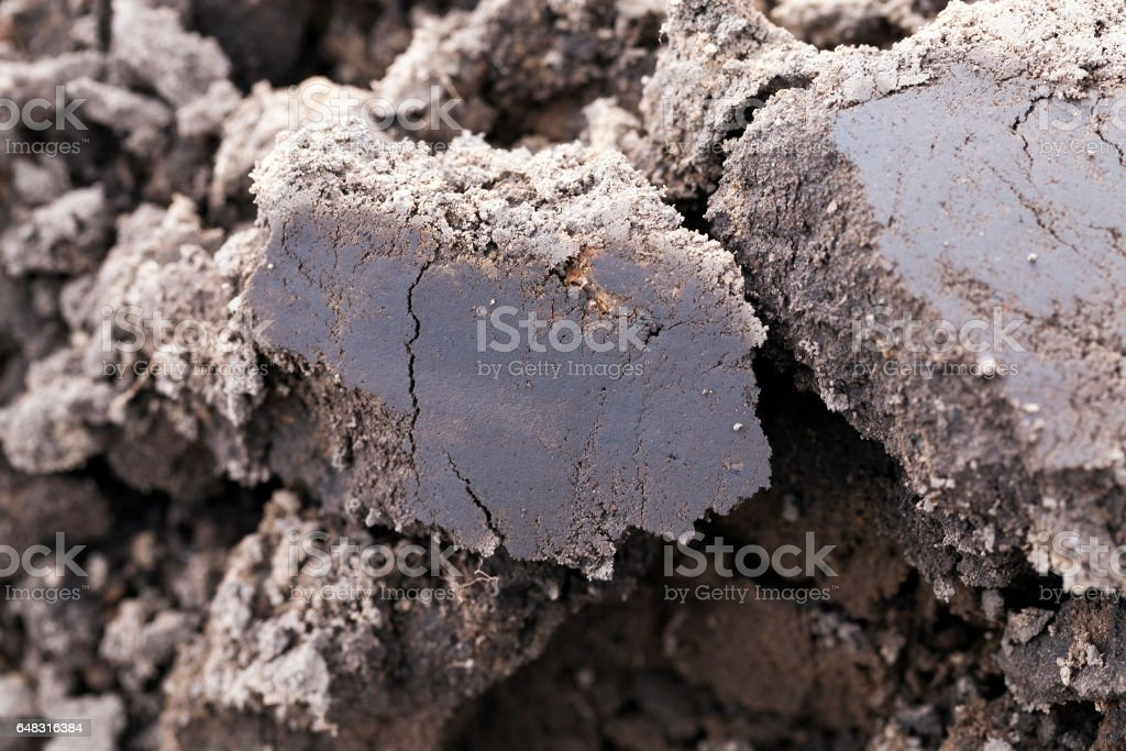 plowed land, close-up stock photo
