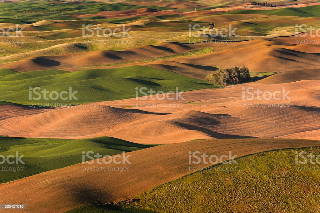 Plowing Abstracts stock photo