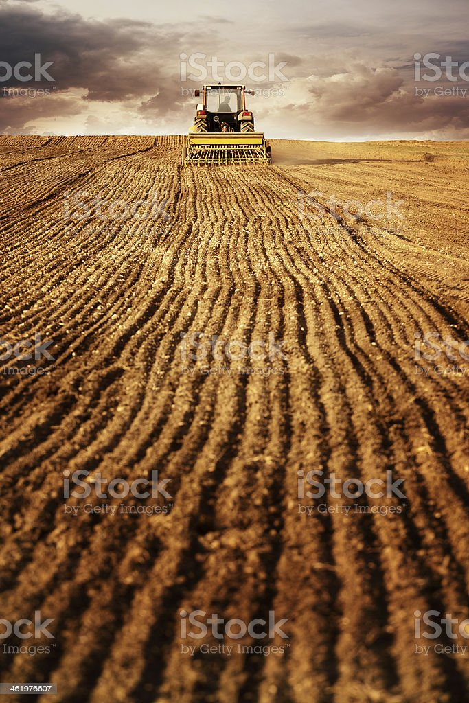 plowing and sowing maize field with tractor stock photo